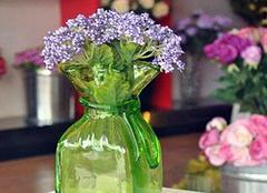 新手养殖花卉有哪些注意点 让家中的花卉不再无故死亡