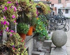 家居种植绿植场地篇 掌握空间利用打造迷你花园景致