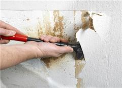 有什么措施拯救墙纸发霉 墙纸发霉处理方法
