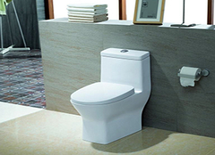 墙排式马桶优缺点解析 提升舒适度