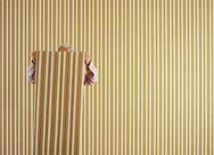 室内装修墙纸主要分哪几类 常见墙纸种类