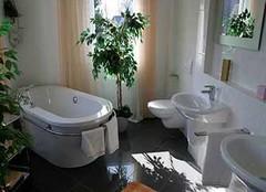 卫生间放什么植物风水好 您这么摆放了吗