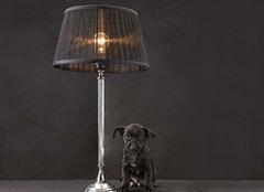 我们如何清理家中的落地灯 保养技巧带来长久使用寿命