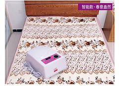 电热毯和水暖毯哪个好 冬天还你温暖