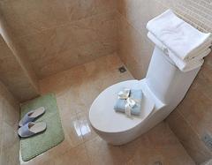 马桶使用不当易漏水 总结马桶漏水的原因都是哪些