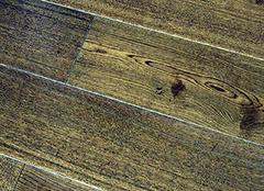 高性价比实木复合地板品牌 冬季新品推荐