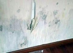 墙壁起皮发霉的处理方案 解决家居烦恼
