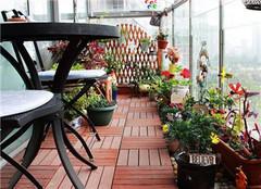 阳台养花怎么做好 还你一片净土