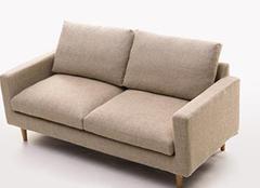 家中双人沙发有哪些保养技巧 日常习惯很重要