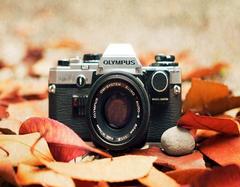 购买数字相机需要考虑哪些因素