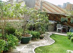 阳台花园设计 阳台应该怎么装修
