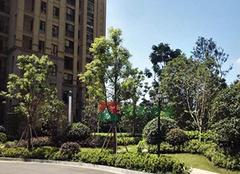 外地人杭州买房需要什么条件 要注意哪些事项