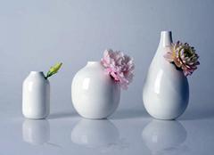 花瓶搭配诀窍 点缀家居更美