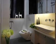 洗手间设计装修 最看重的几项原则是什么