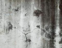 房屋裂缝鉴定标准是什么 又是怎么划分的呢