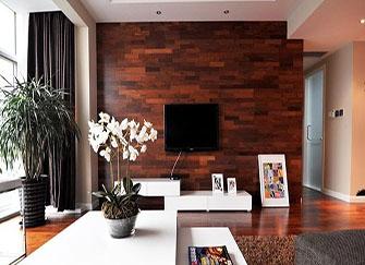 电视装修背景墙应如何选材好 电视背景墙的材料