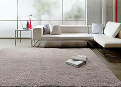 护理羊毛地毯需避开误区 羊毛地毯如何护理呢
