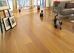 家装软木地板的选购要点 彰显主人不凡品味