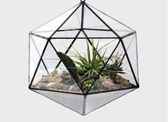 玻璃花房设计技巧 离大自然越来越近
