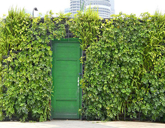 仿真绿植墙安装方法介绍 仿真绿植墙营造好心情