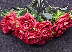 玫瑰花的花语是什么 带给你你一段美丽的传说