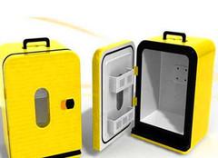 便携式冰箱怎么选 便携式冰箱多少钱一台