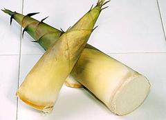 竹笋的做法有哪些 教你简单三种菜肴