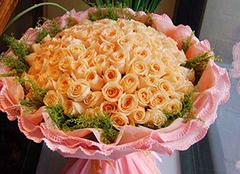 香槟玫瑰花语是什么 我钟情的只有你