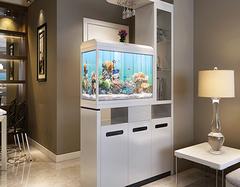 家里客厅鱼缸摆放风水 这几点你注意了吗?