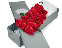 19朵玫瑰花语是什么  不同颜色的玫瑰花花语详解