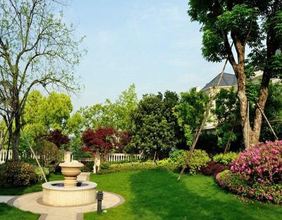 庭院植物风水有哪些禁忌  庭院植物风水八宜四忌