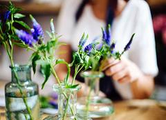 如何做好一个生活插花? 学插花从这里开始