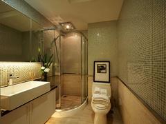 卫生间装饰设计介绍 怎么装饰卫生间最好