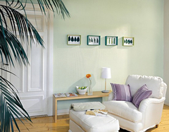 内墙乳胶漆立邦和多乐士哪个好  内墙乳胶漆多少钱一桶