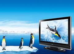 液晶电视尺寸一般是多少 液晶电视选购事项
