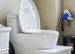 卫生间装马桶好还是蹲坑好 马桶和蹲坑哪个好呢