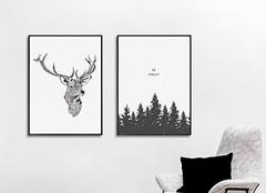 黑白装饰画好看吗 黑白装饰画有哪些特点