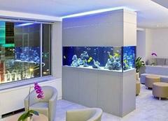 办公室鱼缸摆放位置 鱼缸放在什么位置招财