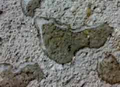 水泥砂浆能防水吗 防水砂浆什么牌子好