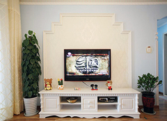 客厅电视柜摆什么植物 客厅电视柜摆什么招财