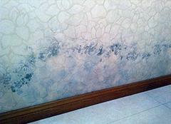 墙纸发霉是什么原因 卧室墙纸发霉怎么办
