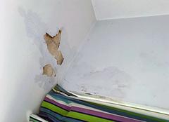 墙皮脱落修补妙招 墙皮脱落可以贴墙纸吗