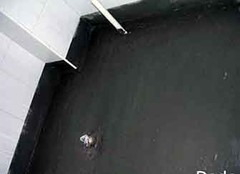 卫生间防水涂料价格 家装卫生间防水材料品牌前十名