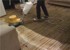 室内手工地毯如何清洗 清洗地毯用什么清洗剂