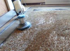 地毯》清洗方法 清洗地毯多少�X只是冷冷地看著一��平方