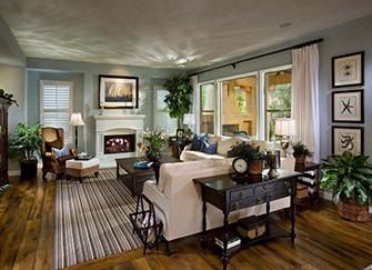 客厅风水植物有哪些 客厅放什么植物风水好