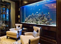 鱼缸放在客厅什么位置最好 鱼缸高度多少合适风水