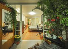 封闭阳台如何打造花园 阳台怎样布置养花架子