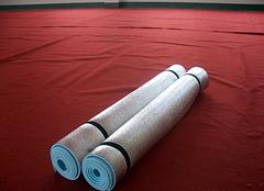 家用防潮垫哪种好 室内防潮垫什么牌子好