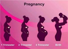 怀孕初期不能吃什么 怀孕初期注意事项